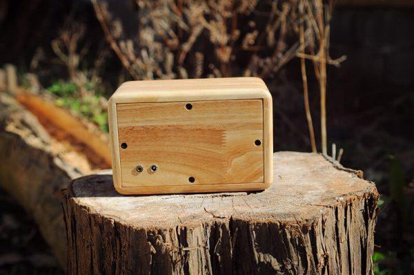 wooden speaker cabinet